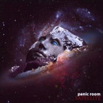 PANIC ROOM / Satellite