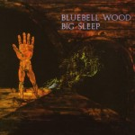 BIG SLEEP / Bluebell Wood